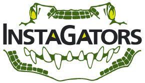 The Insta-Gators Logo